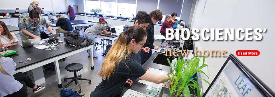 Busy biosciences lab