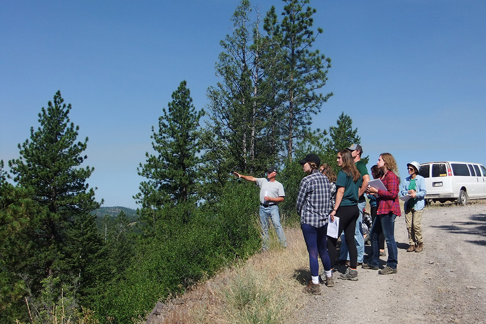 Students at Montana Camp observing the mountainside