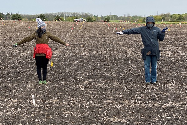 Two students standing six feet apart in a field used as a research plot at Iowa State University