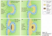 Illustration shows four stages of oxbow formation