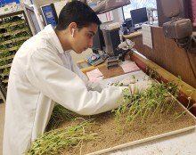Young man working in seed lab