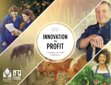 Cover of Innovation to Profit report
