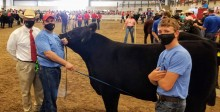 Photo of Dan Thomson (Animal Science), Dan Robison (CALS) and youth exhibitor Carson Suchan showing Suchan's steer