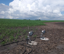 Monitoring equipment in area of field where emerging crops have been drowned out.