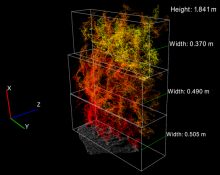 Image of sorghum using 3D cloud reconstruction