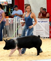 Carly showing a pig