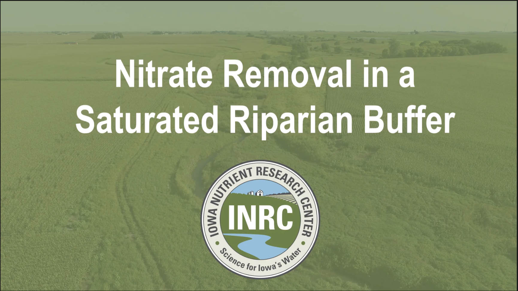 Title frame from Nitrate Removal in a Saturated Riparian Buffer video