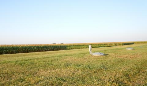 corn and soybean drainage research plots