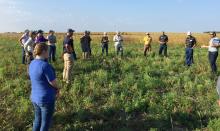 Field day group on Roadman Farm prairie strips near Dike, Iowa.
