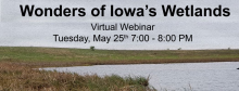 image of wetland with title of webinar